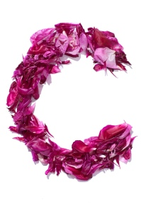 Flower_Alphabet_-_C