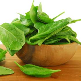 spinach_and_bowl_big